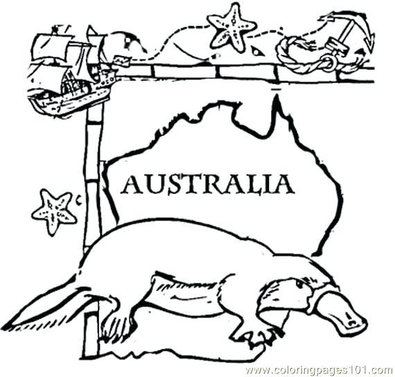 570x544 Australian Coloring Pages S Australian Money Coloring Pages