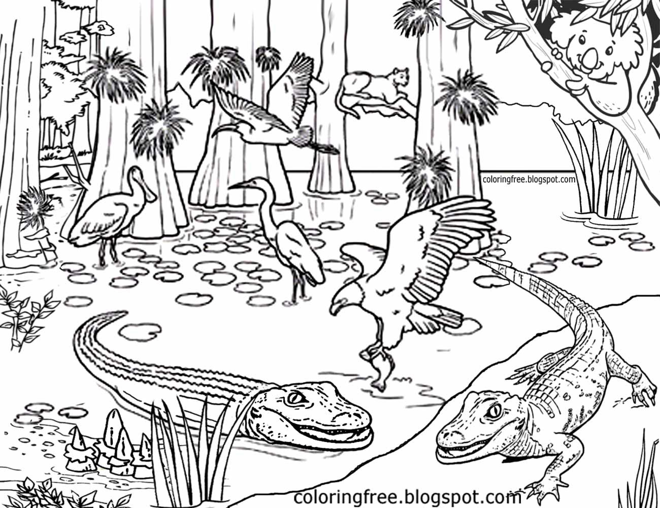 1300x1000 Australia Coloring Pages Australian Animals Colouring Brisbane