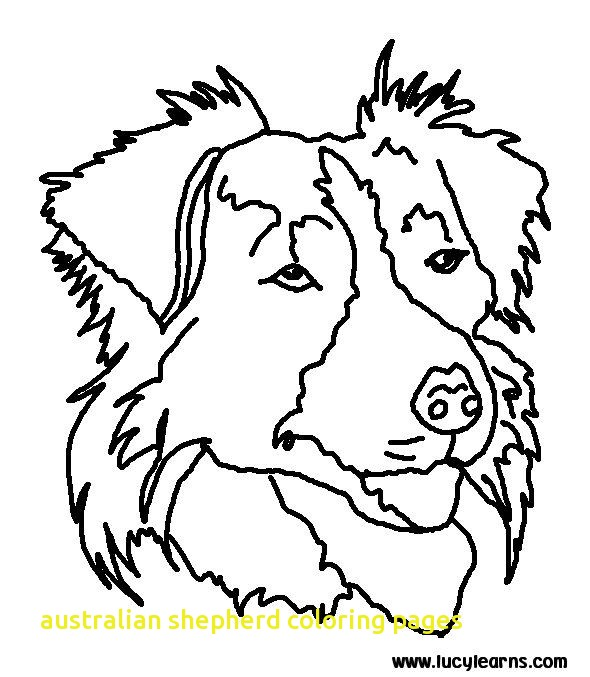 590x677 Australian Shepherd Coloring Pages With Best Dog Coloring Page