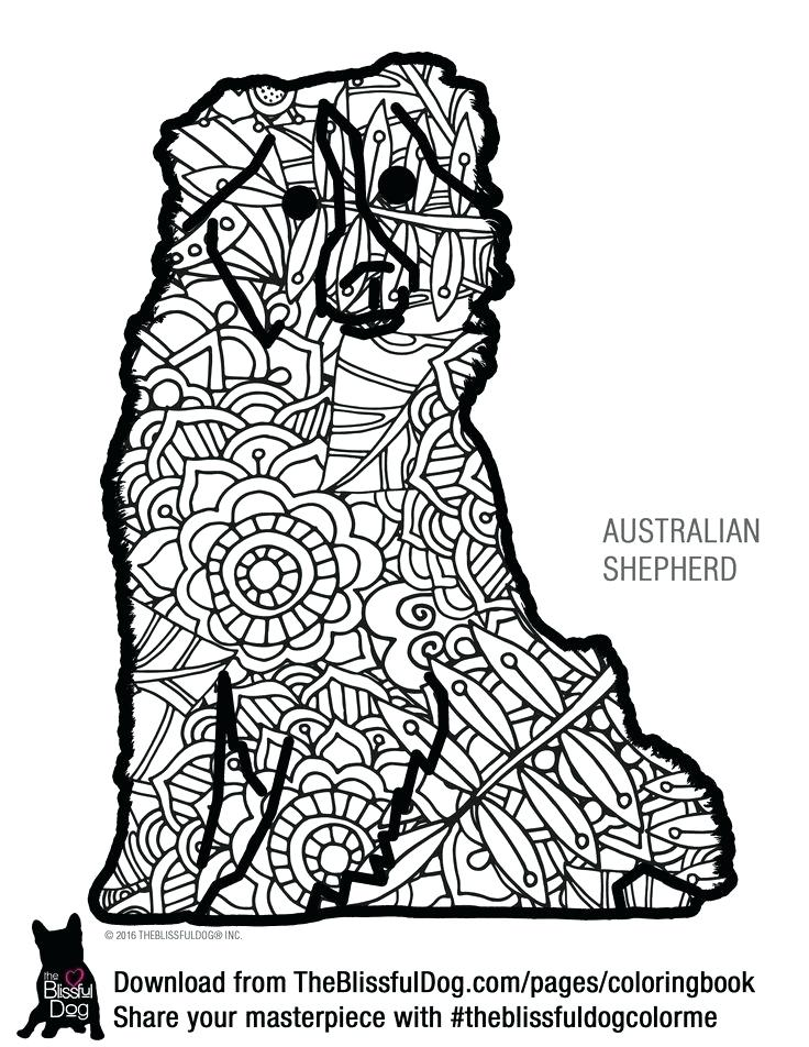 736x952 Shepherd As Well As Coloring Book Mini Australian Shepherd