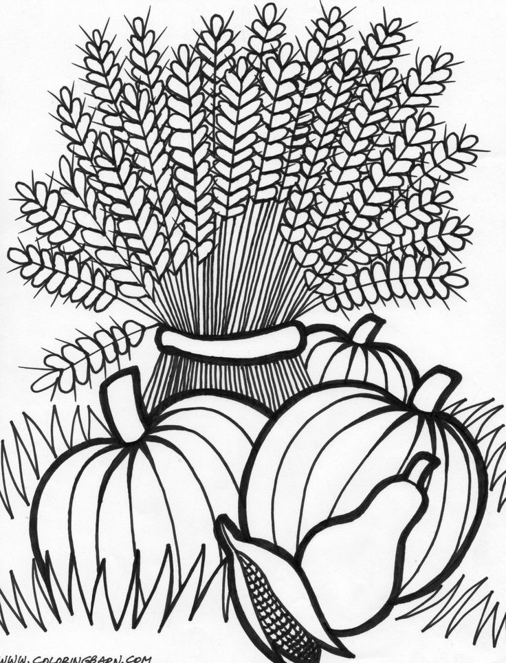 736x964 Autumn Flowers Adult Coloring Pages Free