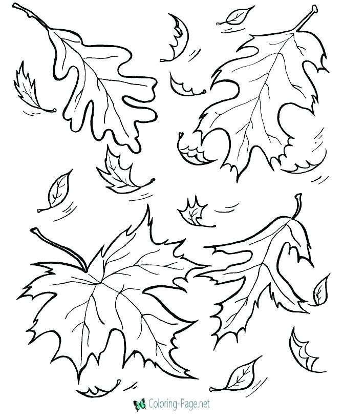 670x820 Fall Autumn Coloring Pages Fall Coloring Pages Fall Coloring Pages