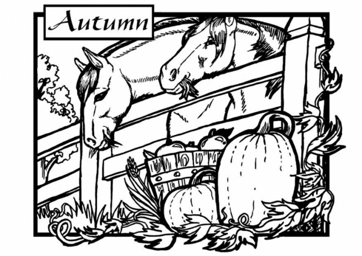 712x504 Fall Coloring Pages