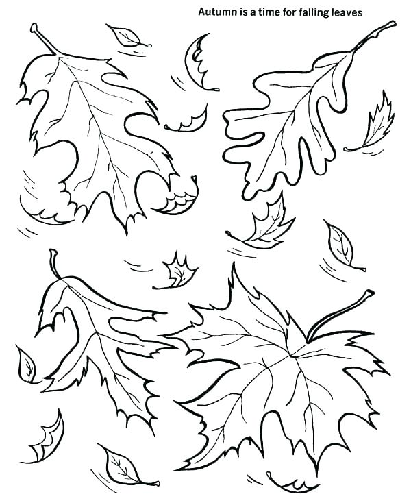 600x734 Falling Leaves Coloring Pages Autumn Leaves Coloring Pages Fall