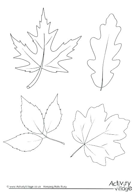 460x650 Autumn Leaves Coloring Pages