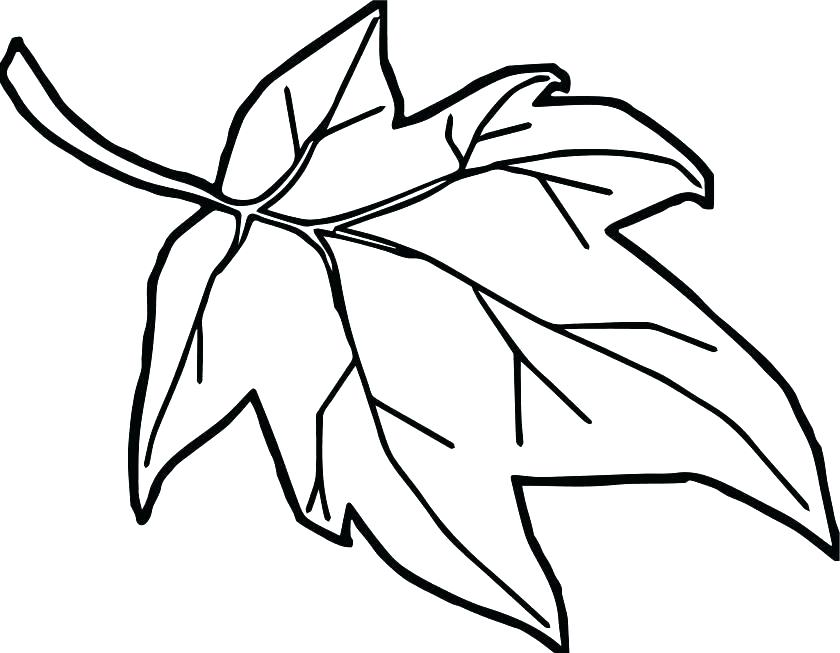 840x653 Leaves Coloring Pages