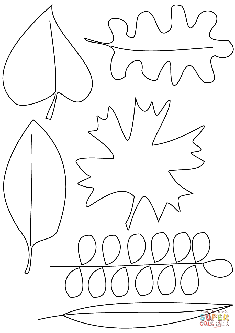 919x1300 Autumn Leaves Coloring Pages