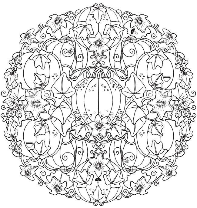 650x686 Creative Haven Wonderous Nature Mandalas Coloring Book