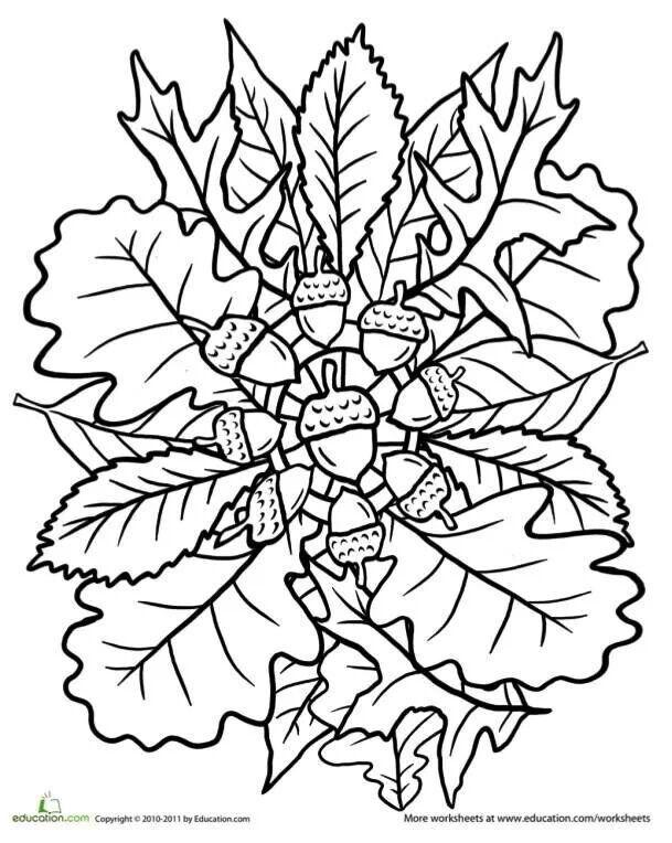 609x764 Fall Mandala Coloring Pages