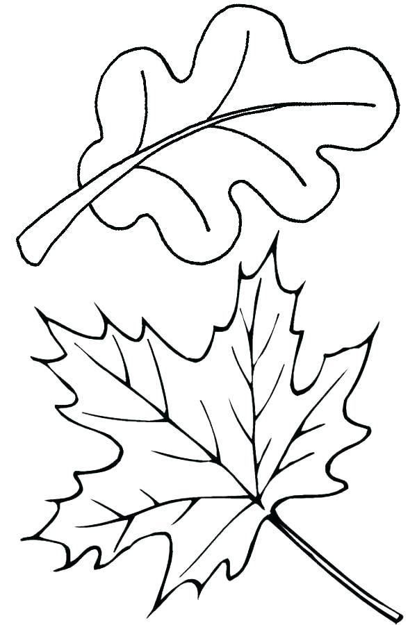 600x900 Fall Themed Coloring Pages Fall Themed Coloring Pages Autumn