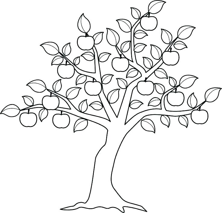 Autumn Tree Coloring Pages