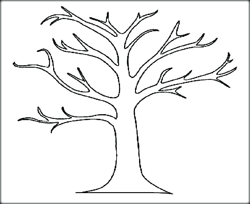 800x654 Tree Coloring Pages Fall Tree Coloring Page Bare Tree Coloring