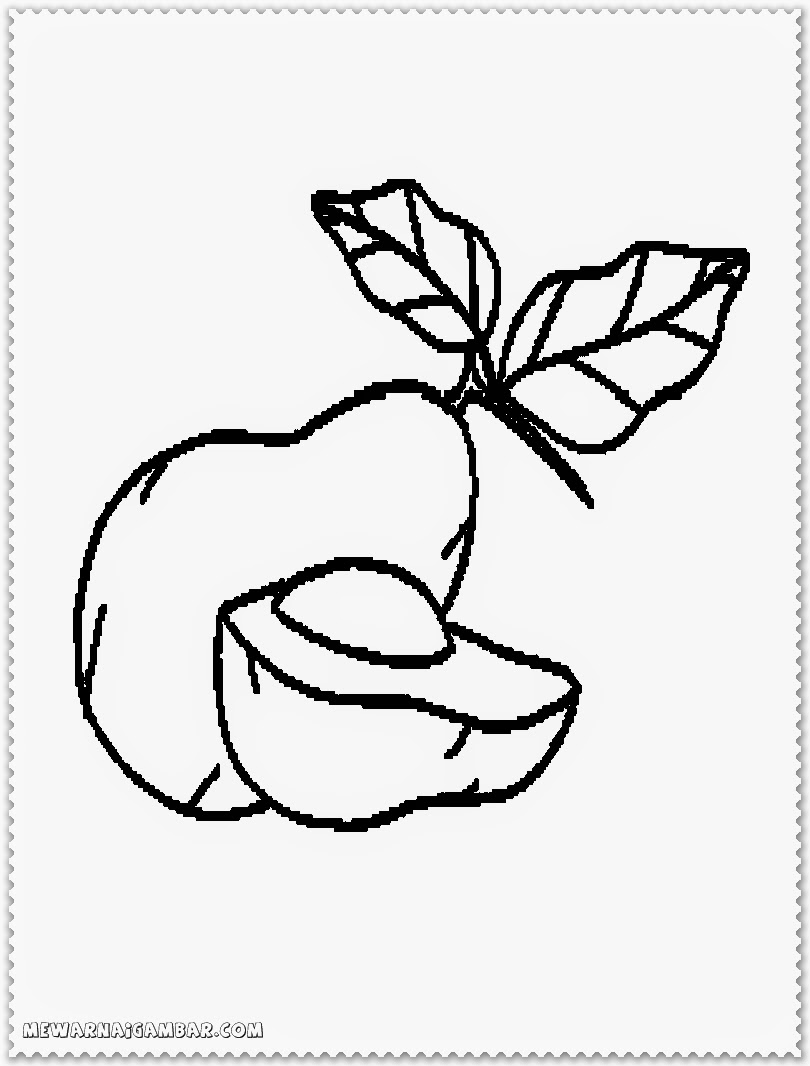 810x1066 Avocado Fruit Printable Coloring Pages