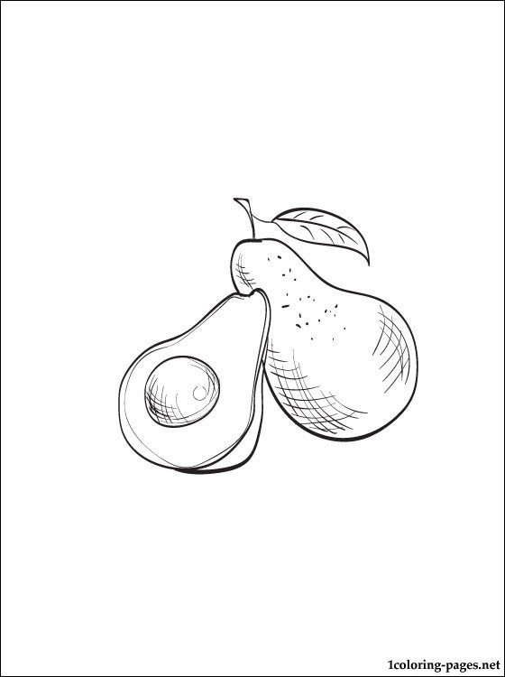 560x750 Avocado Coloring Page To Print Out Coloring Pages