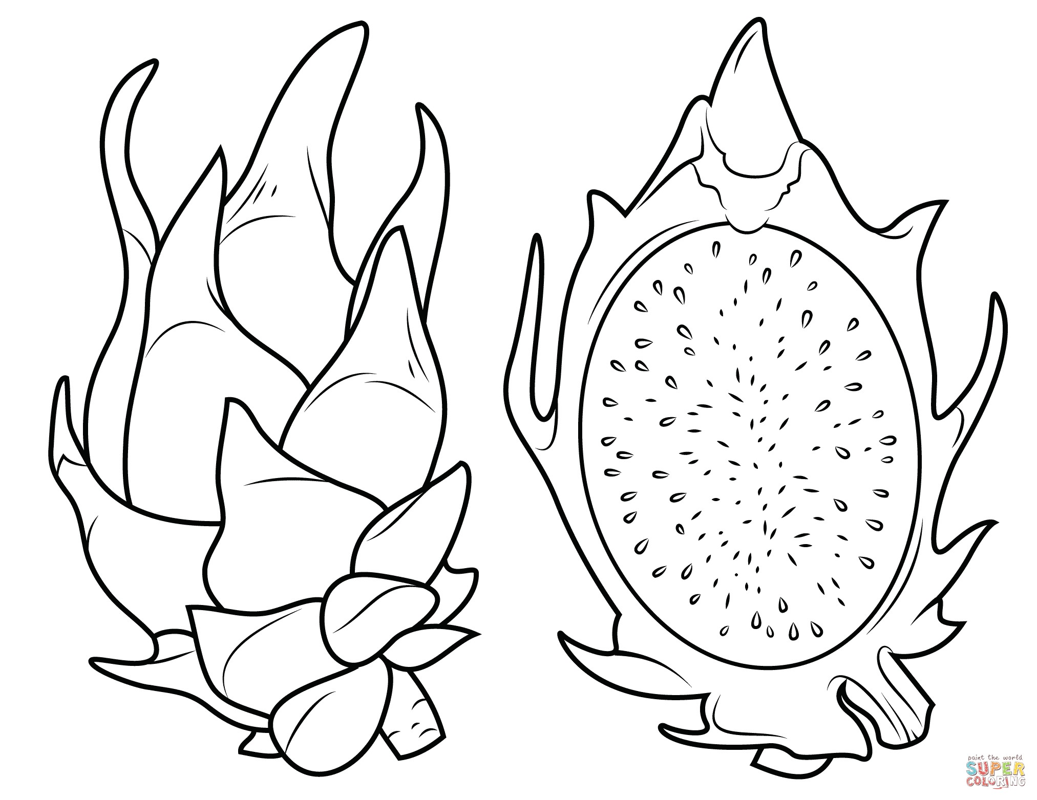 2025x1563 Avocados Fruits Coloring Pages For Kids Best Of Dragon Fruit