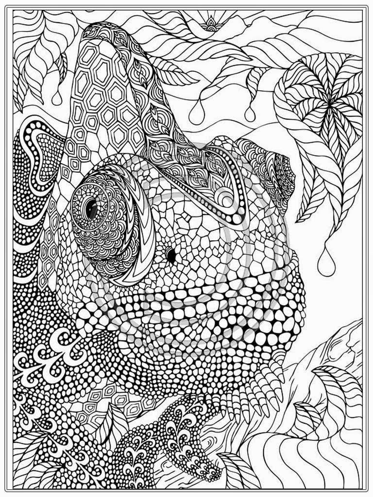 768x1024 Awesome Adult Coloring Pages Free Printable Iguana Realistic