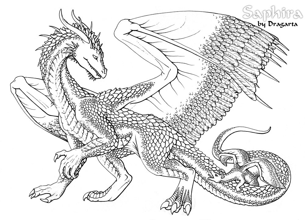 1000x723 Dragon Coloring Pages For Adults