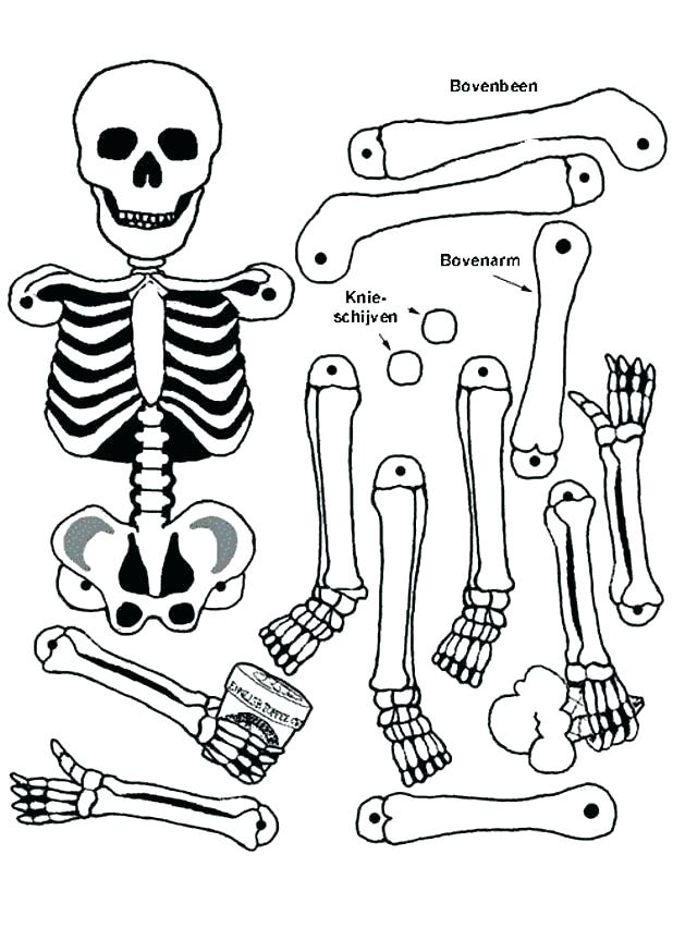 618x874 Skeleton Coloring Pages Printable Skeleton Coloring Page Skeleton