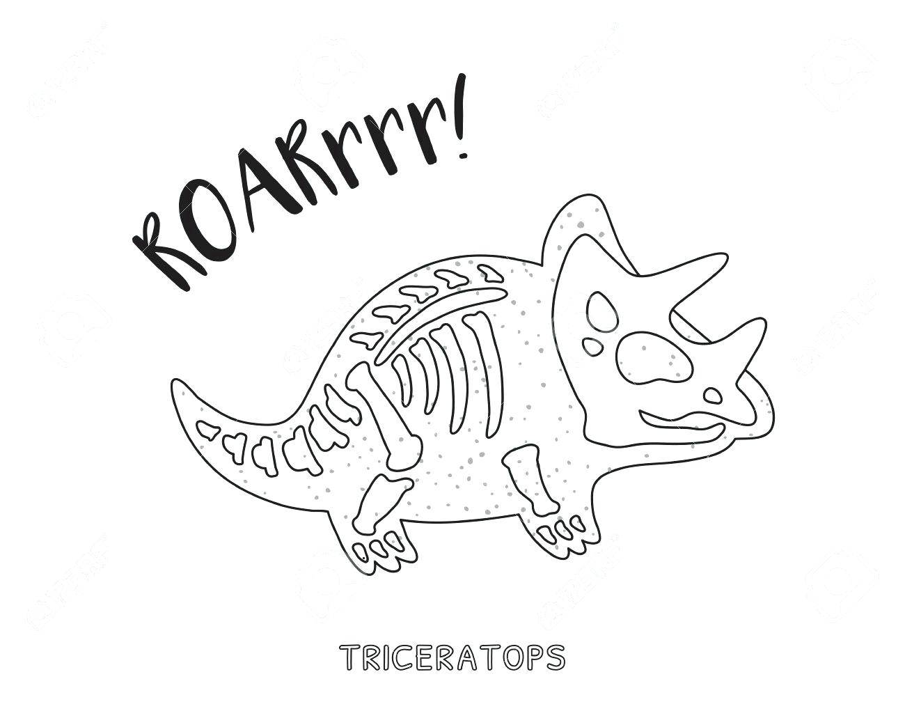 1300x1021 Skeleton Coloring Pages Special Pictures To Color Head Free Axial