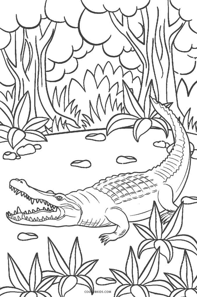 676x1020 Free Printable Alligator Coloring Pages For Kids