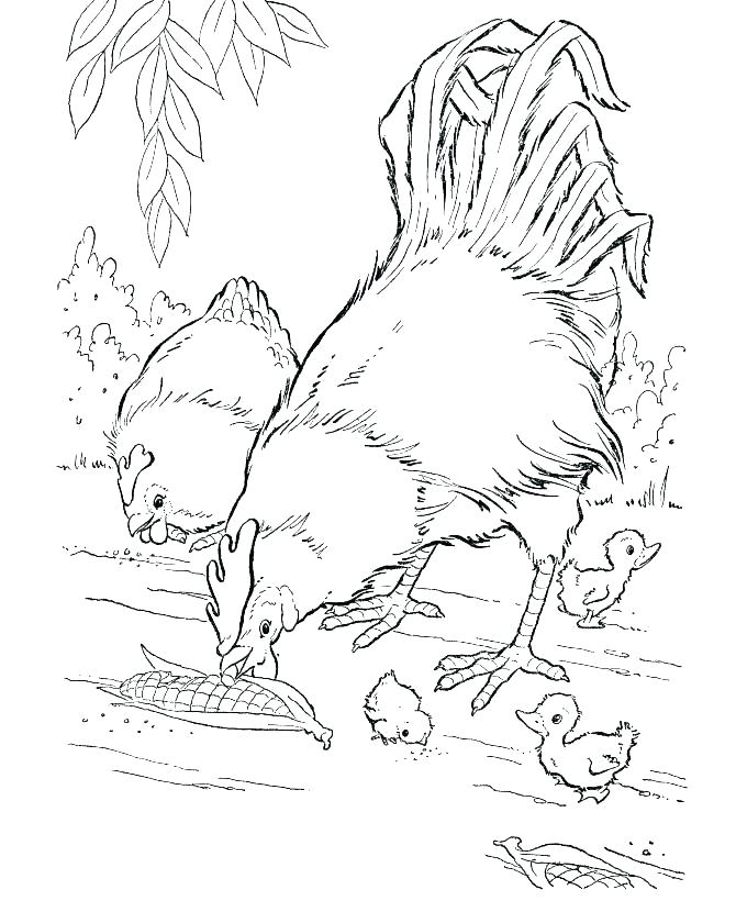 670x820 Baby Animal Coloring Pages To Print Cute Baby Animal Coloring
