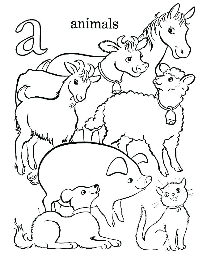 670x820 Ocean Coloring Pages For Kindergarten Ocean Animals Coloring Page