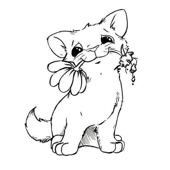photograph relating to Cat Coloring Pages Free Printable titled Child Cat Coloring Webpages at  Absolutely free for
