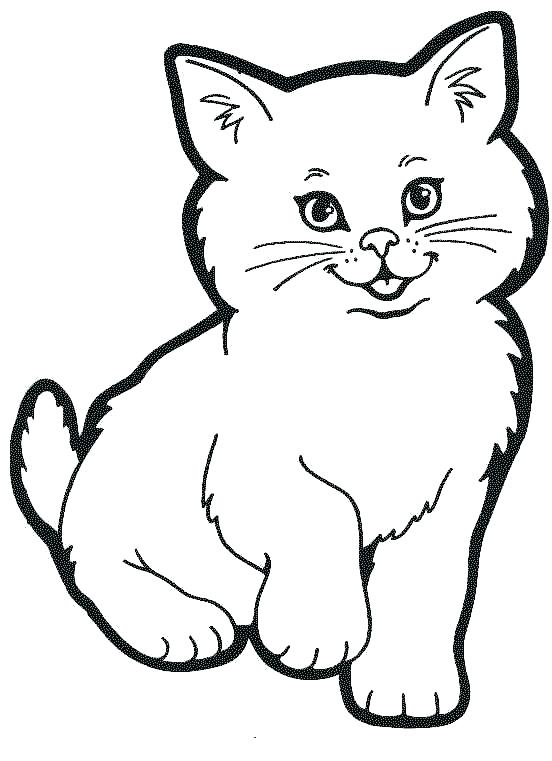 552x761 Marvelous Baby Cat Coloring Pages Marvelous Baby Cat Coloring