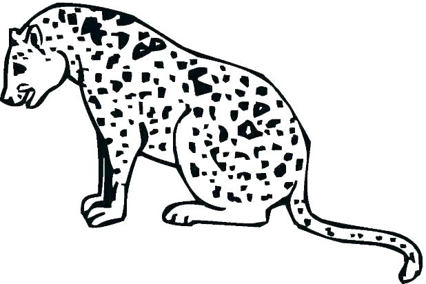 Baby Cheetah Coloring Pages at GetDrawings | Free download