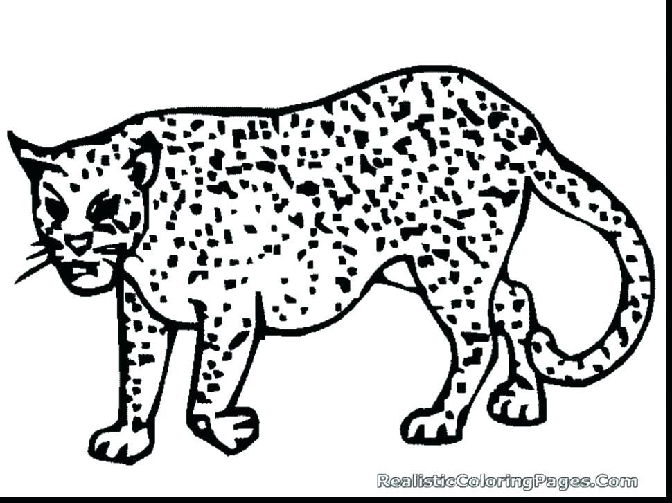 970x727 Cheetah Coloring Pages Cheetah Coloring Page With Cheetah Coloring