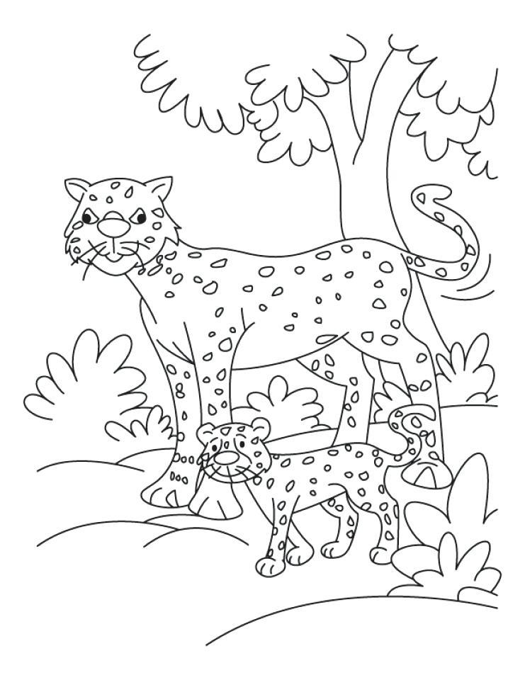 741x960 Cheetah Coloring Page Cute Baby Cheetah Coloring Pages Cheetah