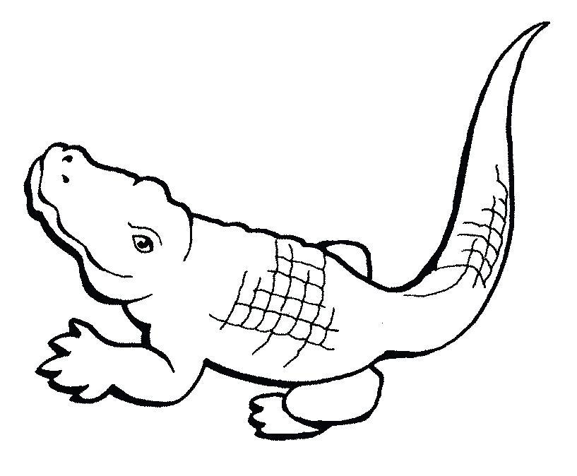 817x674 Crocodile Coloring Pages Reptiles Aboriginal Crocodile Coloring