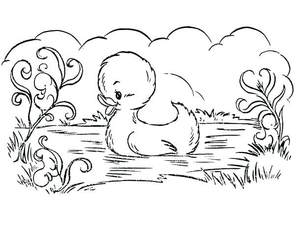600x490 Baby Duck Coloring Page Baby Duck Coloring Pages Duckling Coloring