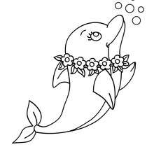 220x220 Baby Dolphin Coloring Page Free Download