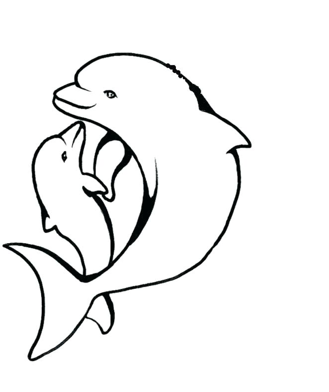 662x790 Baby Dolphin Coloring Pages Baby Dolphin Coloring Pages Coloring