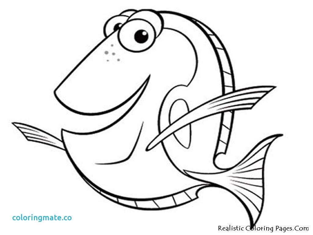 1024x768 Dory Coloring Pages Dory Coloring Pages Unique Cartoon Fish Free