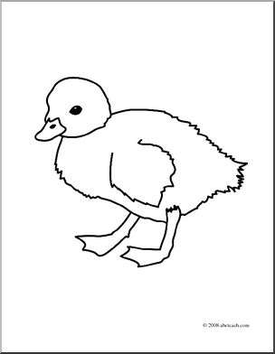 304x392 Clip Art Duckling