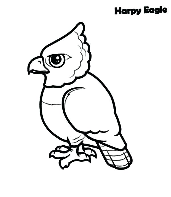 600x693 Harpy Eagle Coloring Page Printable Eagle Coloring Pages For Kids