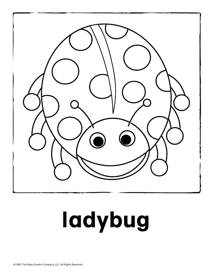 728x942 This Is Baby Einstein Coloring Pages Images Baby Animal Free Baby