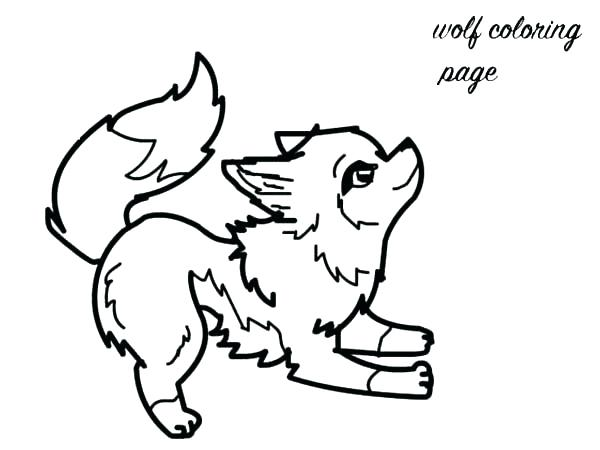600x450 Charming Printable Wolf Coloring Pages Baby Fox Coloring Pages