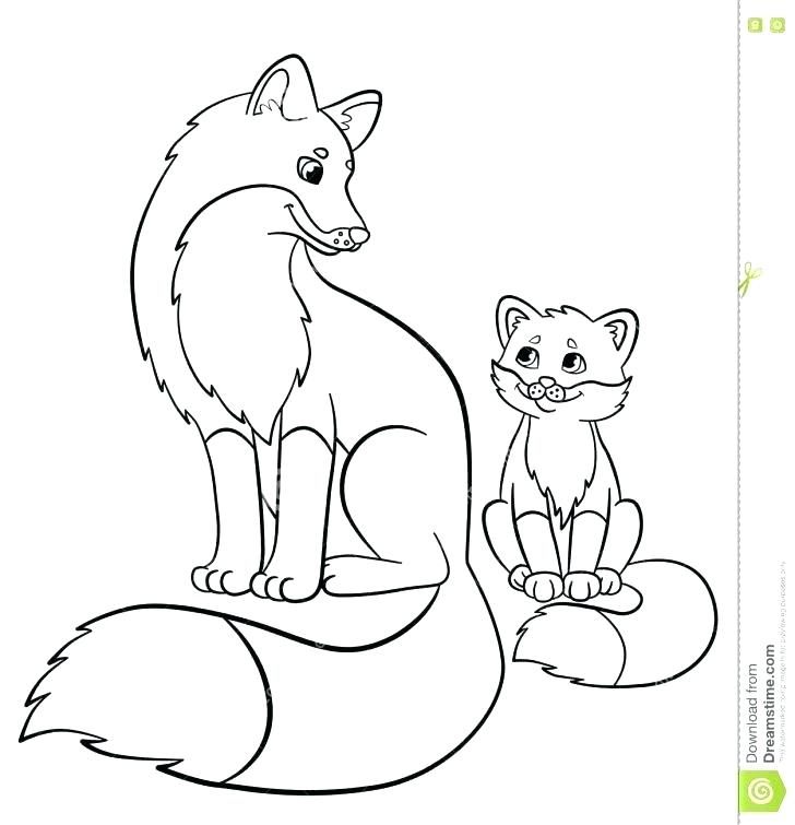 728x755 Red Fox Coloring Pages