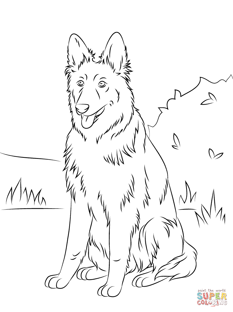 895x1200 Edge German Shepherd Coloring Pages Free Sitti