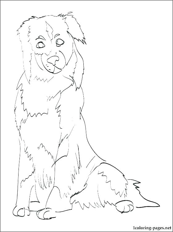 560x750 German Shepherd Puppy Coloring Pages Shepherd Coloring Pages