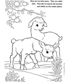 235x288 Barns And Farms Coloring Pages Farm Animalsfarmscountry