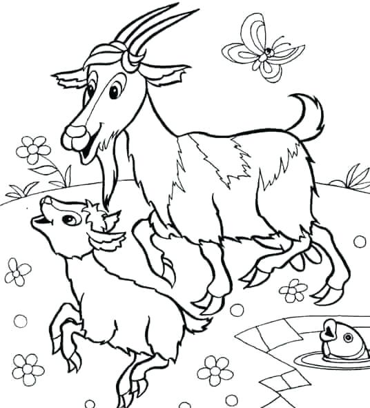 536x591 Coloring Pages Of Animals And Their Babies Goat Coloring Pictures
