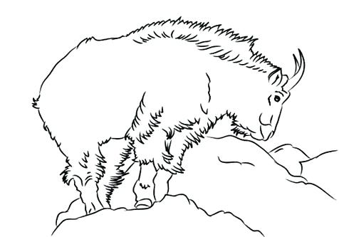 476x333 Goat Coloring Pages Goat Coloring Pages Baby Goat Coloring Pages