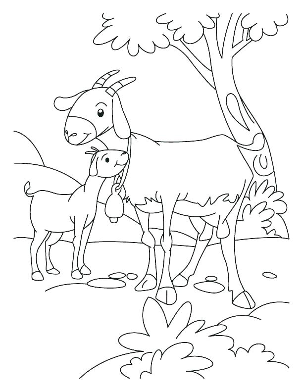 612x792 Goat Coloring Pictures Goat Coloring Pictures Pages Activity Page