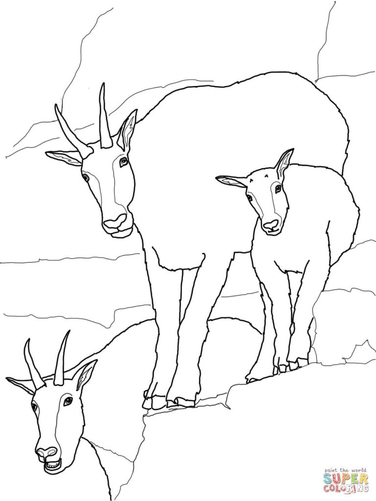 768x1024 Mountain Goat Baby With Family For Coloring Page