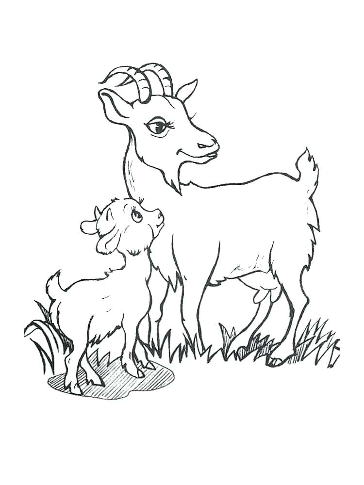 750x1000 Baby Goat Coloring Pages Ba Goat Coloring Pages