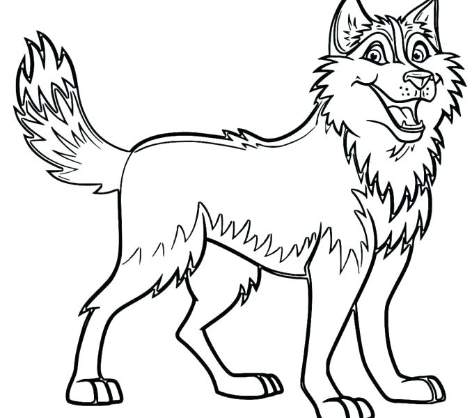 678x600 Awesome Husky Coloring Pages And Husky Coloring Pages Husky